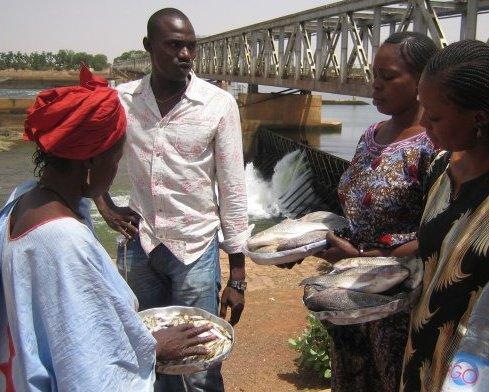 Purchasing fresh fish from the Niger river