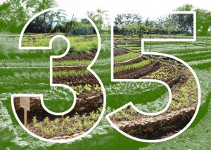 35 year farmer-to-farmer logo containing a field in the number 35