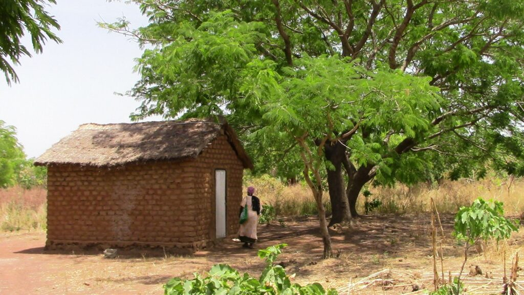 a small mud house for mushroom production in the shade of a tree with a woman approaching the front door.